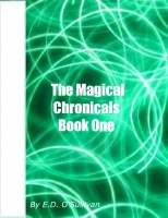 The Magical Chronicals Book One