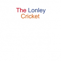 The lonely cricket