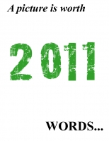 A picture is worth 2011 words
