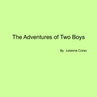 The Adventure of Two Boys