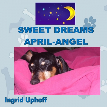 Sweet Dreams April-Angel