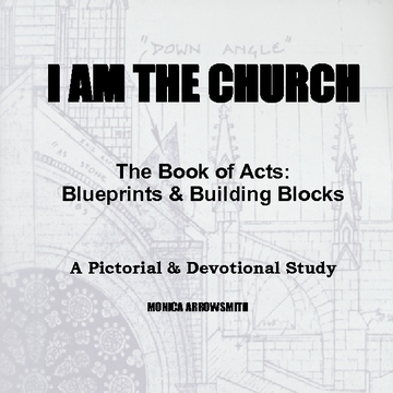 The Book of Acts:  Blueprints & Building Blocks