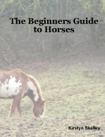 The Beginners Guide To Horses