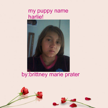my puppy name harlie