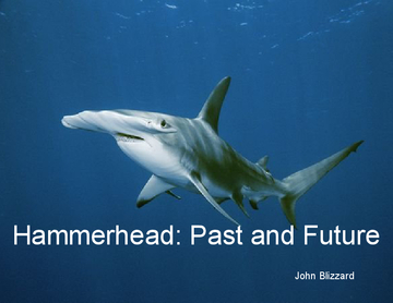 Hammerhead: Past and Future
