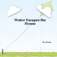 Water Escapes the House