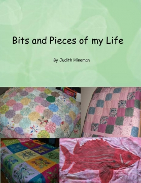 Bits and Pieces of my Life