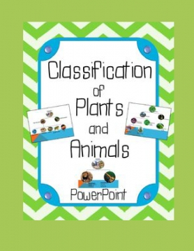 Classifying plants and animal