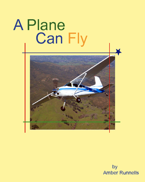 A Plane Can Fly