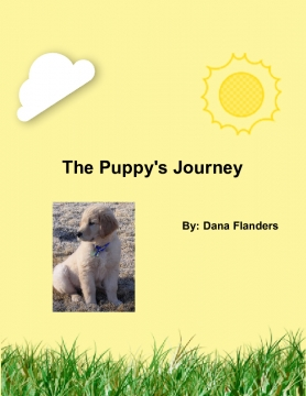 The Puppy's Journey