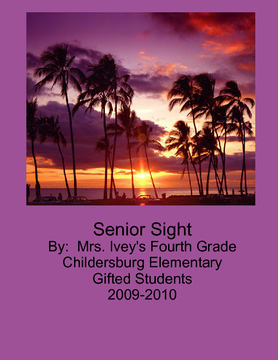Senior Sight