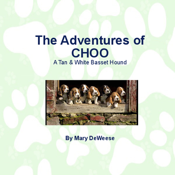 The Adventures of Choo