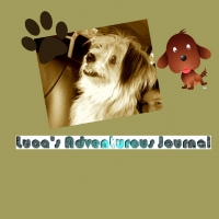 Luca's Adventurous Journal
