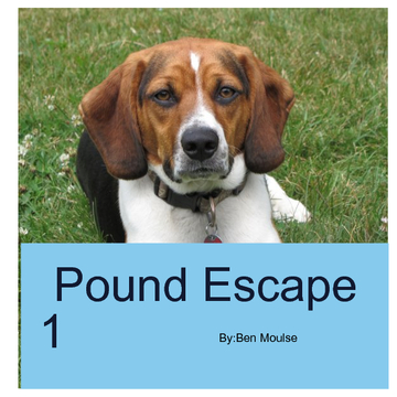 Pound Escape 1
