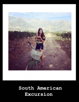 South American Excursion