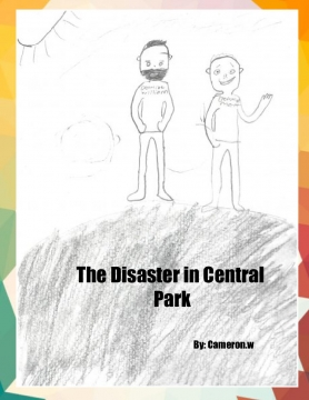 The Disaster in Central Park