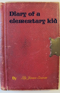 Diary of a elementary kid