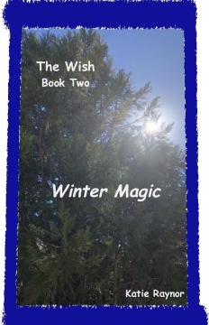 The Wish - Book Two