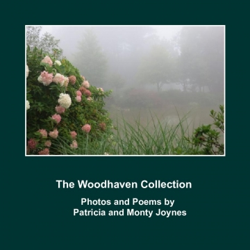 The Woodhaven Collection