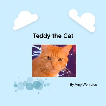 Teddy the Cat