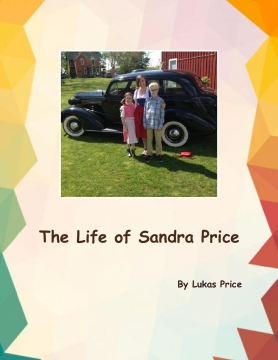 The Life Of Sandra Price