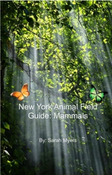 New York Animal Field Guide