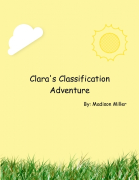 Clara's Classification Adventure