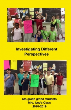 Investigating Different Perspectives