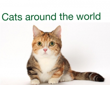 The cat breeds of the world