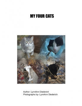 My Four Cats