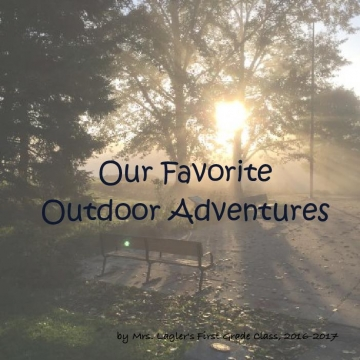 Our Favorite Outdoor Adventures