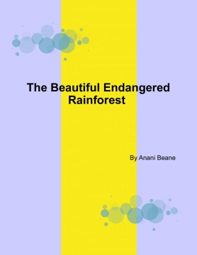 The beautiful endangered rainforest