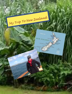My Trip To New Zealand
