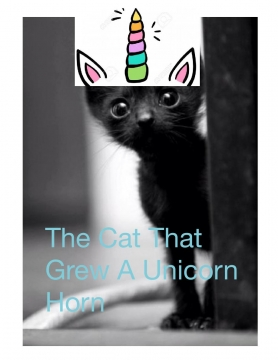 The cat that had a unicorn horn