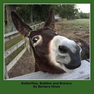 Butterflies, Buddies and Bravery