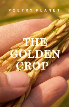 The Golden Crop