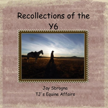 Recollections of the Y6