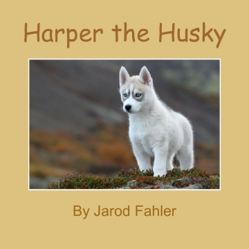 Harper the Husky