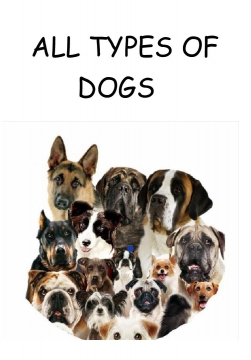 All Types of dogs