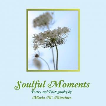 Soulful Moments