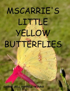 MSCARRIE'S LITTLE YELLOW BUTTERFLIES
