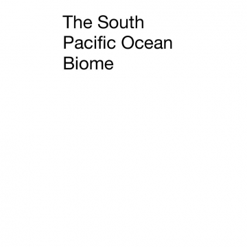 The South Pacific Ocean Biome