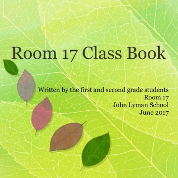 Room 17 Book