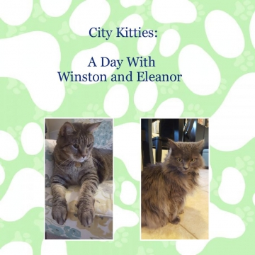 City Kitties: A Day With Winston and Eleanor