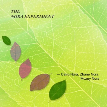 THE NORA EXPERIMENT