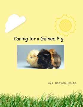 Caring for a Guinea Pig