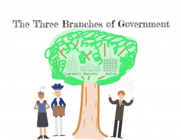 Three Branches of Government