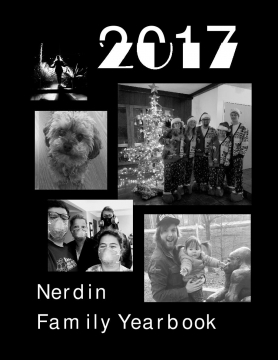 2017 Nerdin Family Yearbook