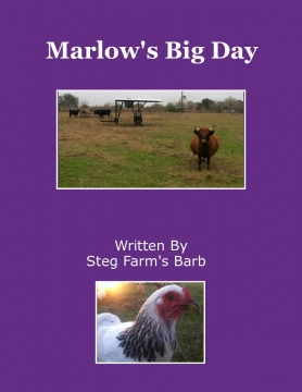 Marlow's Big Day