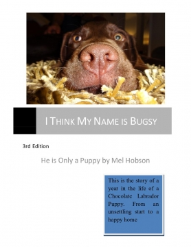 I Think My Name Is Bugsy